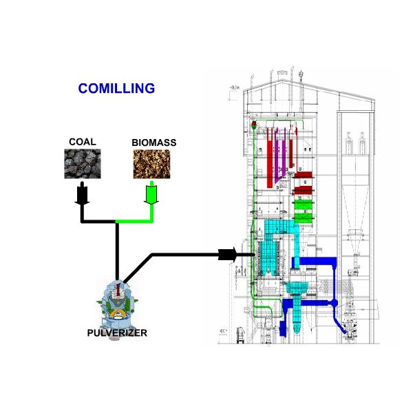 Cofiring Biomass in a Coal-fired Boiler