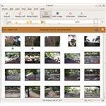 F-Spot image browser