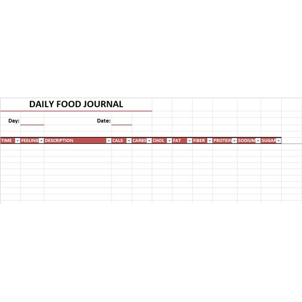 Excel Food Journal