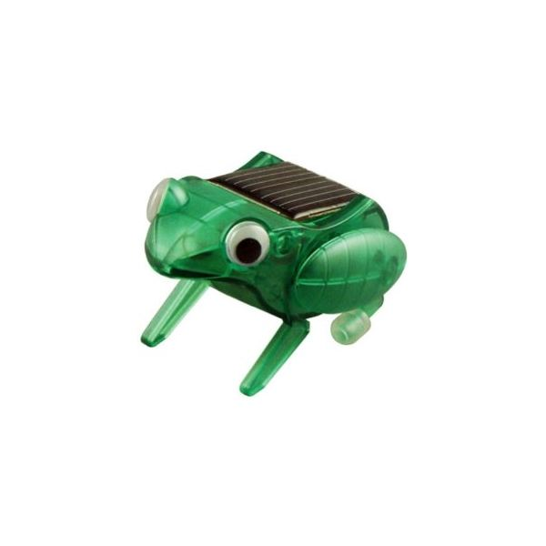 Amazon solar powered frog