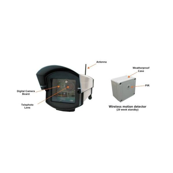 Looking For A Solar Powered Wireless Security Camera With