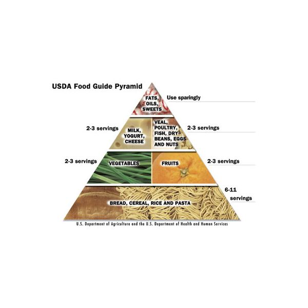 A Quick Look At The Food Guide Pyramid For Kids