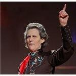 Temple Grandin Squeeze Machine