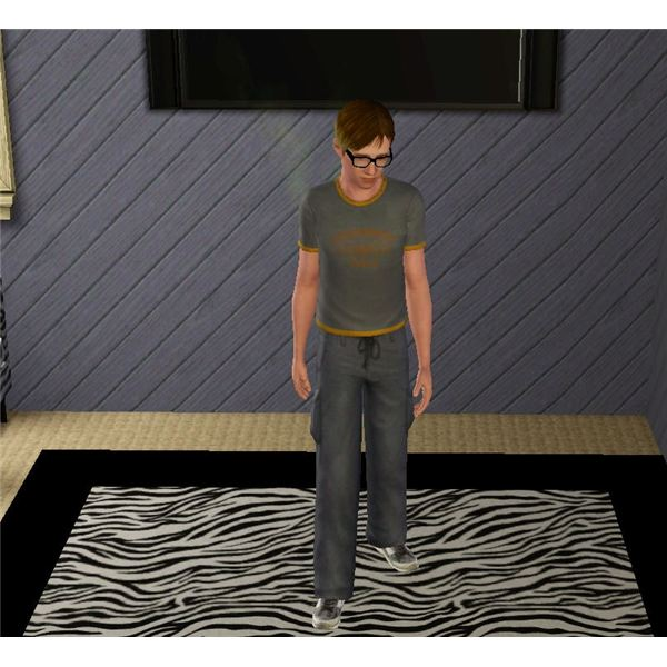 The Sims 3 Hygiene moodlet