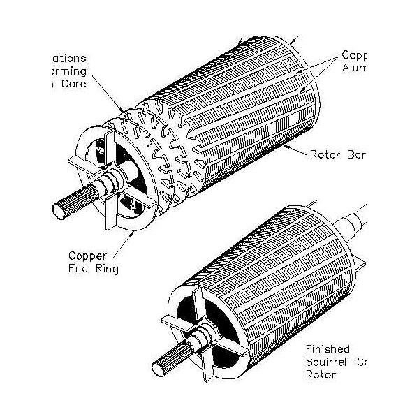 types of ac motors