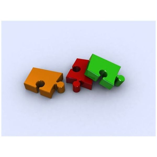 Pieces of the Autism Puzzle