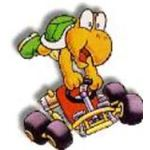 Koopa Troopa is considered by many to be the best character in the game due to his overall balanced style and handling.