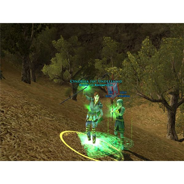 Lord of the Rings Online Captain Guide
