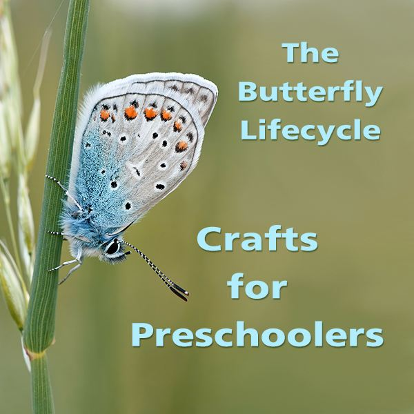 How to Make Preschool Caterpillar and Butterfly Crafts for Butterfly Lifecycle