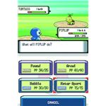 Pokemon Fight between a Piplup and Turtwig