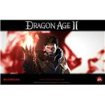 Dragon Age 2 Character Build