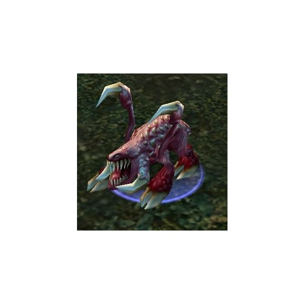 The WoW Random Pet – the Zergling. Haven't I seen this guy in Starcraft?