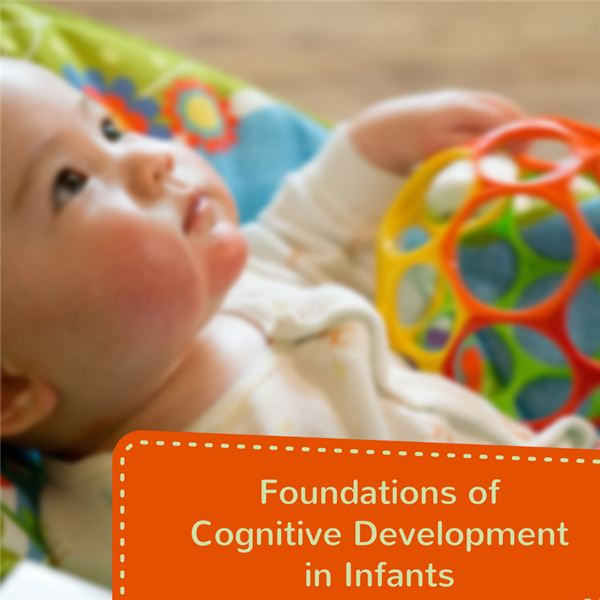 Understanding and Supporting Your Baby's Cognitive Development