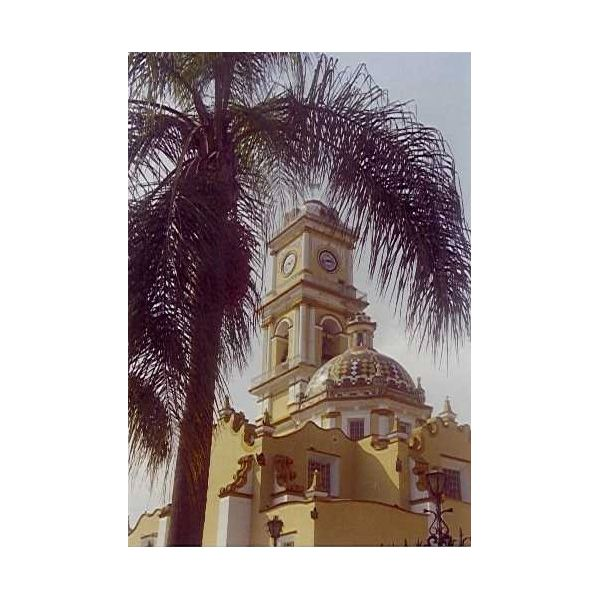 Orizaba cathedral