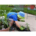 child planting by Jerry on Flickr