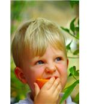 Child Eating an Orange (excellent food source of vitamin C)
