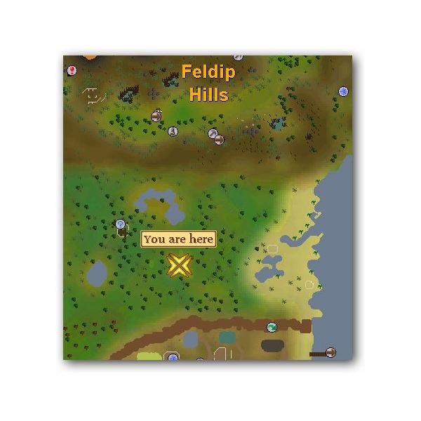 Tips for Pitfall Trapping - A Runescape Hunting Method