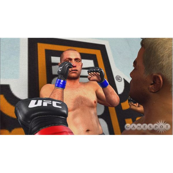 We'll teach you the UFC techniques you need