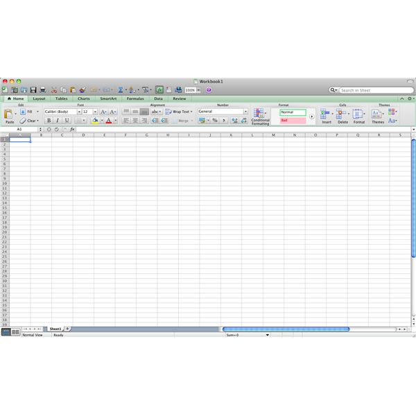 Excel for Mac 2011 Home Tab