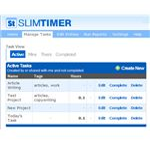 slimtimer taskview