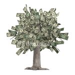 The real effects of phishing - the criminals have a virtual money tree, with you as the branch.