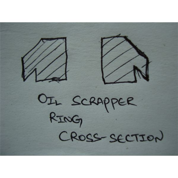 Oil Scrapper Rings Cross-section
