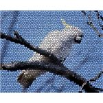 Stained Glass Cockatoo