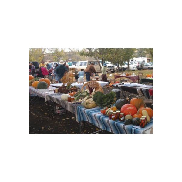 Ramah NM Farmers Market