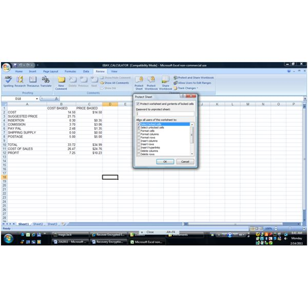 default settings for protecting Excel files
