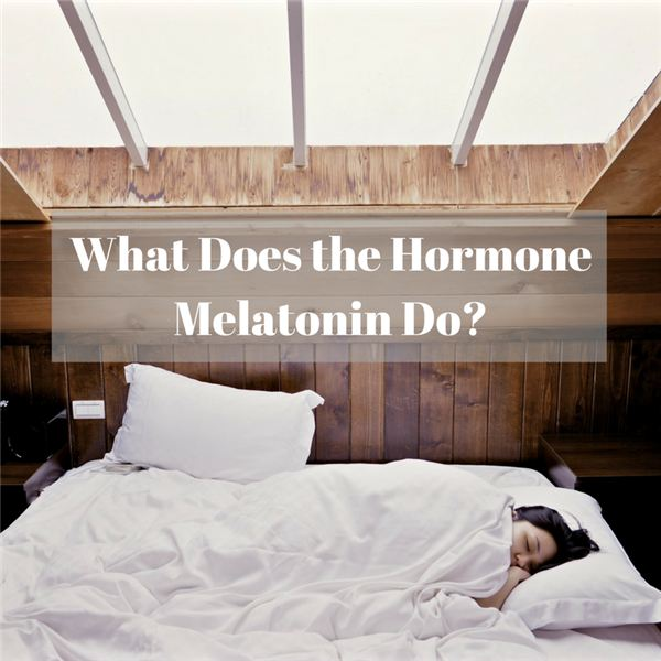 What Does the Hormone Melatonin Do-