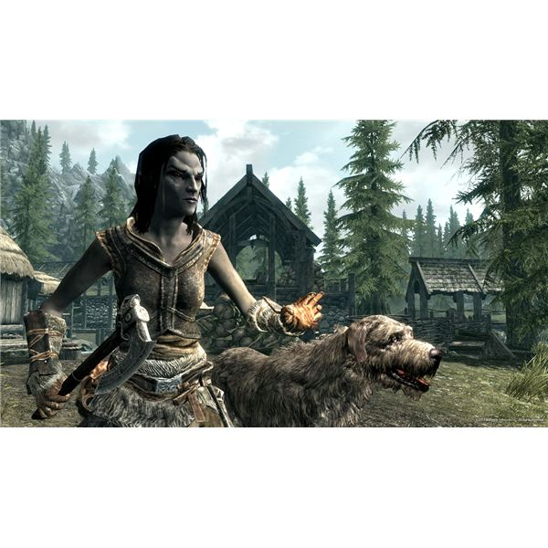 Skyrim Races' Skill Bonuses: The Best Race for Stealth, Mage or Warrior