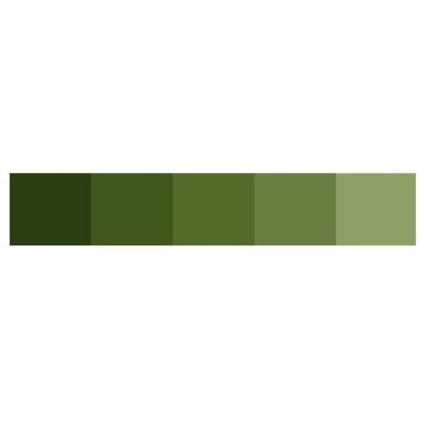 A Typical Green Color Scheme