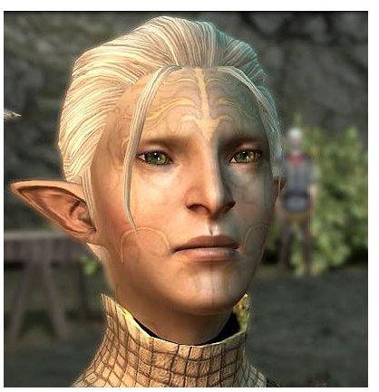 Dragon Age 2 - Elf Keeper