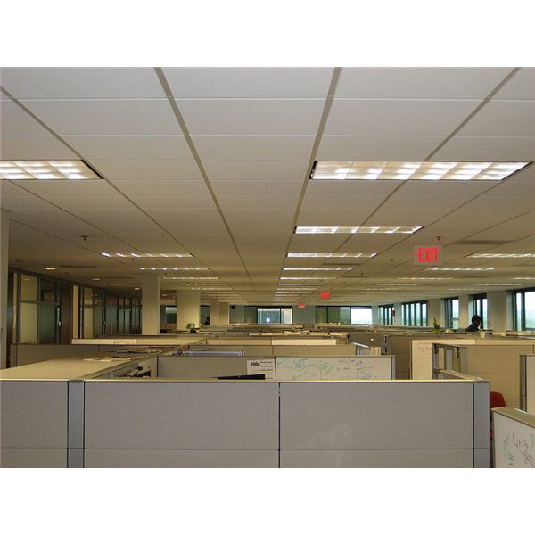 """Cubicles"" by Larsinio/Wikimedia Commons via PD-SELF"