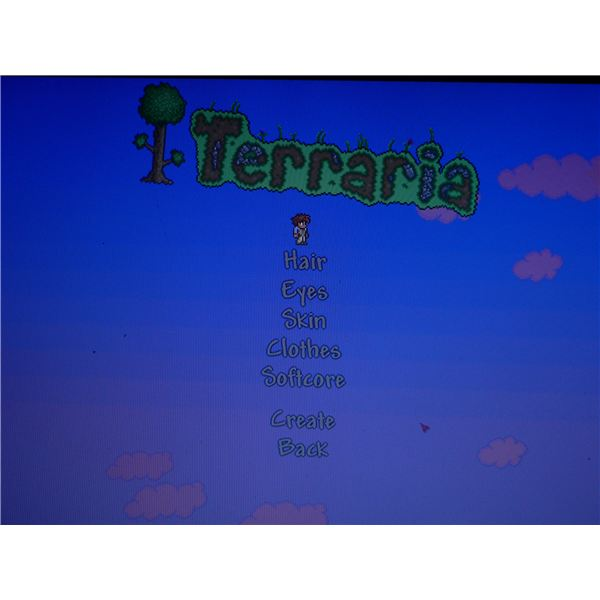 The character creation screen in Terraria.