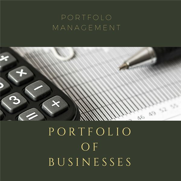 Portfolio of Businesses