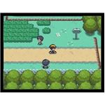 Exploring the Johto Region
