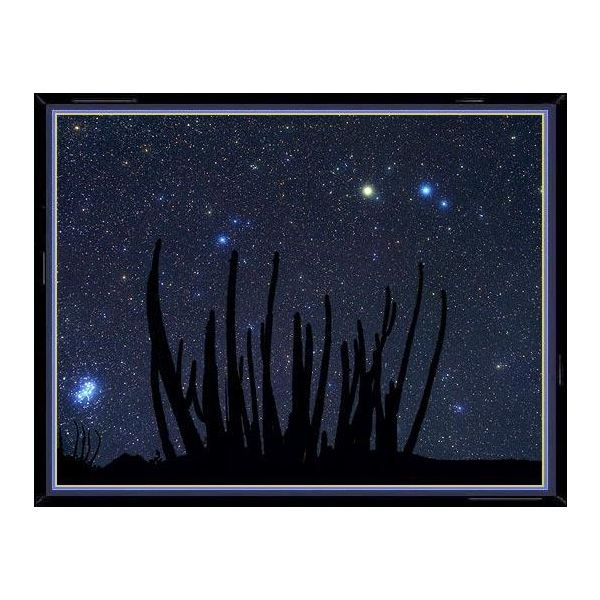 Facts on the Aries Constellation: The Brightest Star of Aries, Size, Visibility, Mythology, and Astrology
