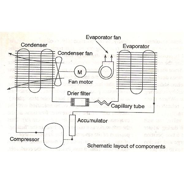 Figure Showing Typical Evaporator