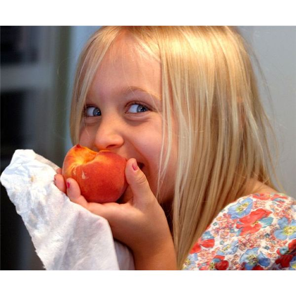 Eating a well balanced diet helps prevent disease. Image by Wikimedia Commons/ Electron.