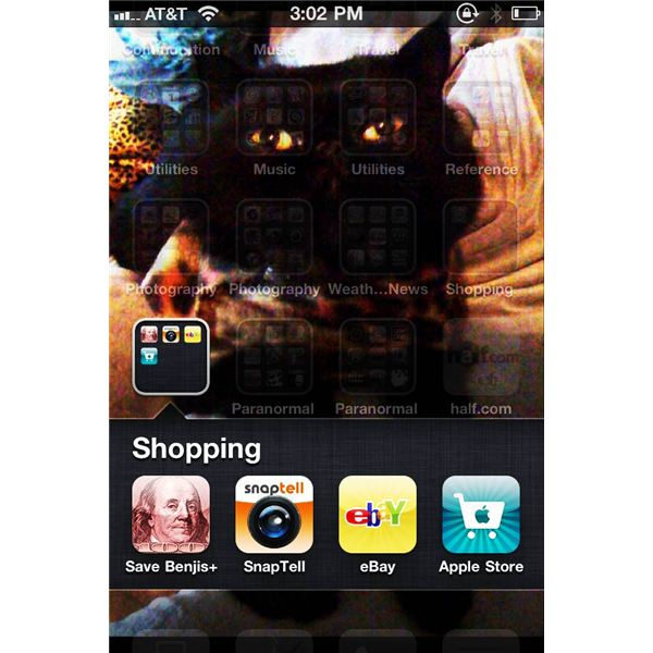 Lets Go Shopping With The iPhone