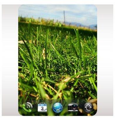Wallpaper Switcharoo Palm Pixi App