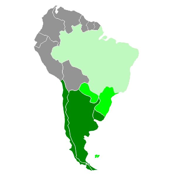 Learn to speak argentine spanish argentina and southern cone gumiabroncs Images