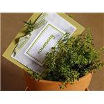 Herb Party Favors - Credit barillaus.com