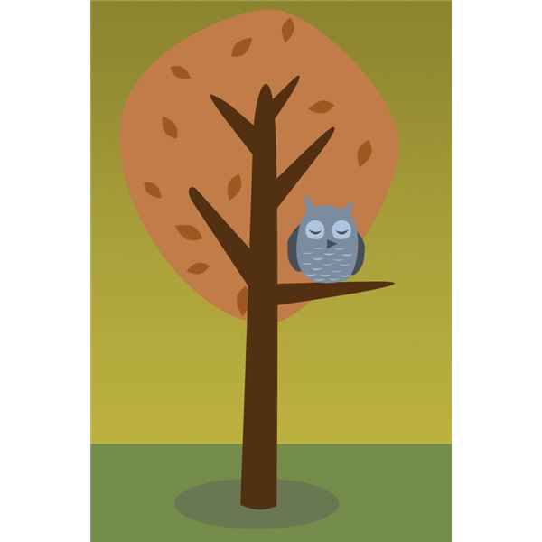 Owl in a Tree by Amber Neely