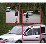 Paparazzo-style photographs (2009 fake)