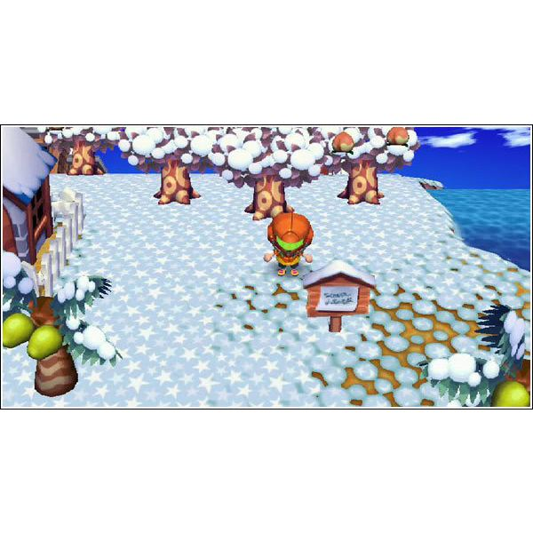 Guide to Bug Catching in Animal Crossing: City Folk for the Nintendo Wii