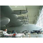 Spruce Goose by Moody75