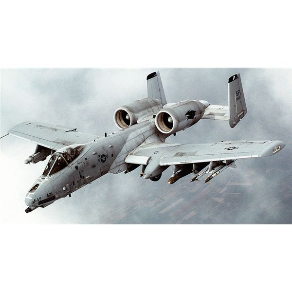 Photo of the A-10 Thunderbolt II