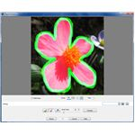 Object Extractor in PaintShop Photo Pro X3